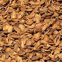 pellet-gusci-mandorle
